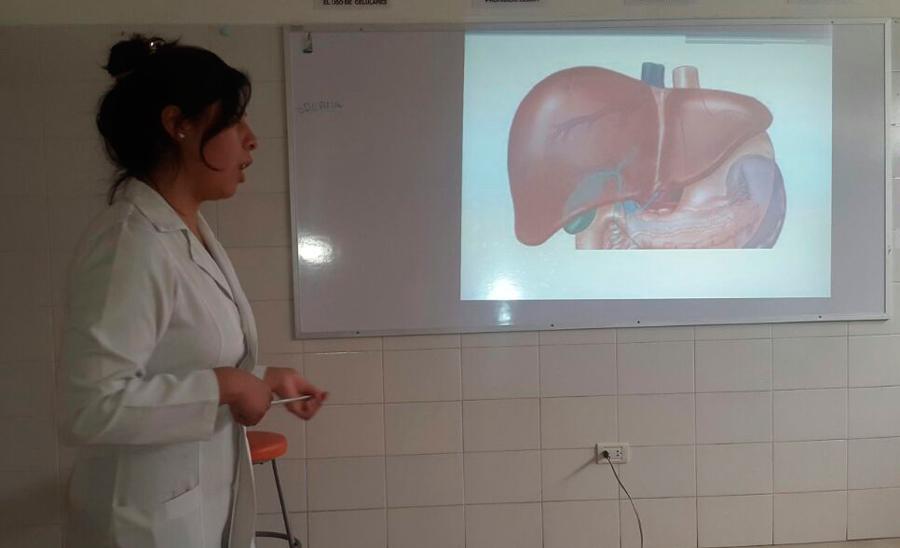 Lujoso Prueba De La Ciencia Olimpiada Anatomía Molde - Anatomía de ...